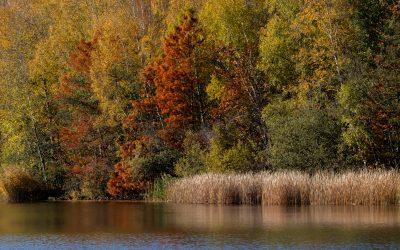 """""""Herbstliche Ville"""""""