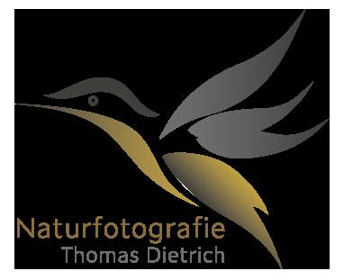 Thomas Dietrich Fotografie
